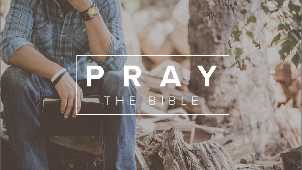 Praying the Bible for Your Family: November